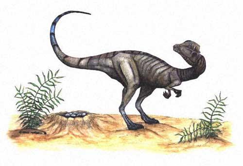Le dinosaure Dilophosaurus (dilophosaure).