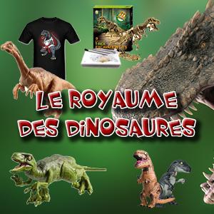 royaume-dinosaures.com, vente en ligne de produits sur les dinosaures.