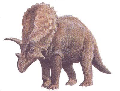 Pentaceratops.