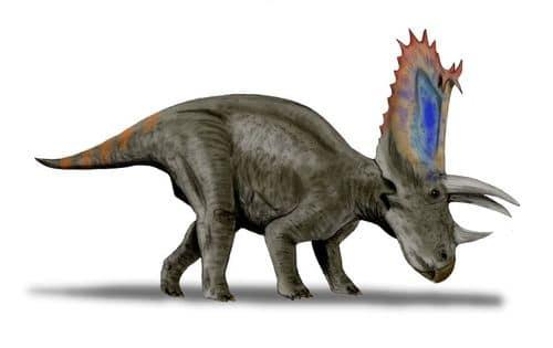 Le dinosaure Pentaceratops.