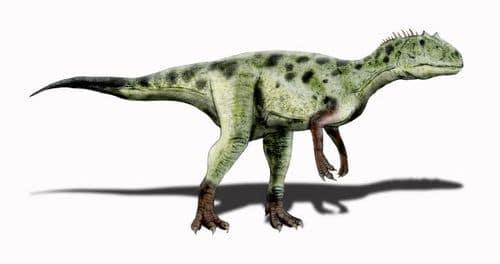 Le dinosaure Piatnitzkysaurus.