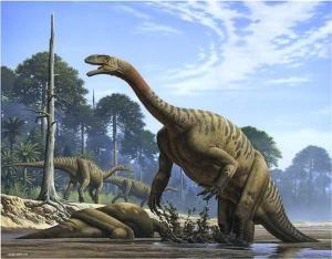Le dinosaure Plateosaurus.