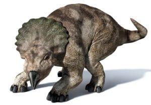 Le dinosaure Protoceratops.