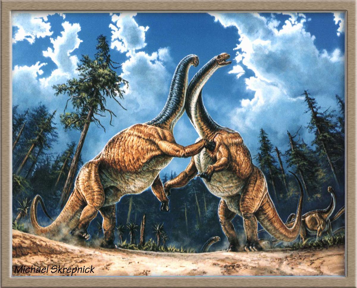 Le dinosaure Jobaria du Sahara nigérien.