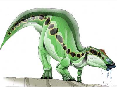 Prosaurolophus.