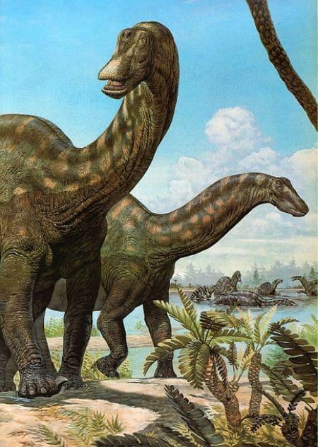 Le dinosaure Patagosaurus.