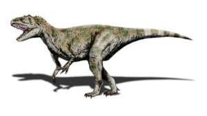 Le dinosaure Megalosaurus.