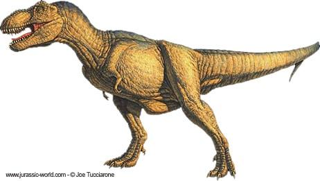 Un dinosaure Tyrannosaure, ou T rex.