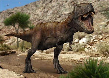 Un féroce dinosaure Tyrannosaure.