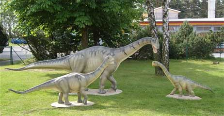 Europasaurus holgeri, un dinosaure nain.