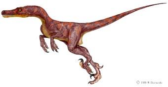Dinosaure vélociraptor.