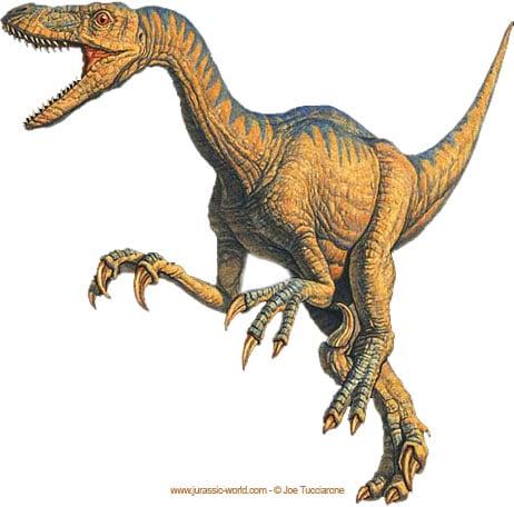 Dinosaure velociraptor.