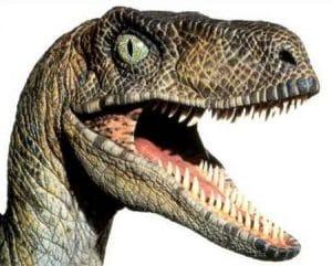 Un Velociraptor la gueule ouverte montrant ses grandes dents.