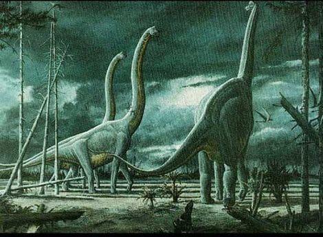 Un troupeau de dinosaures Brachiosaurus.