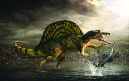 Le dinosaure spinosaurus.
