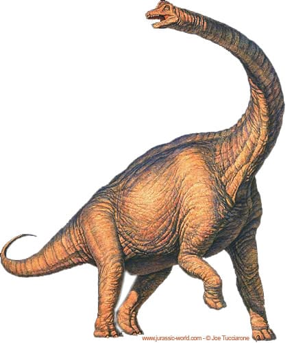 Brachiosaure.