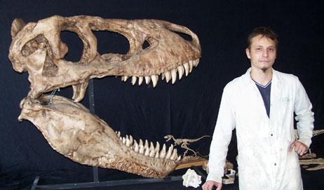 Reproduction d'un crâne de Tarbosaurus à l'échelle 1.