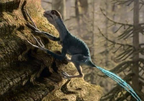 Epidexipteryx.