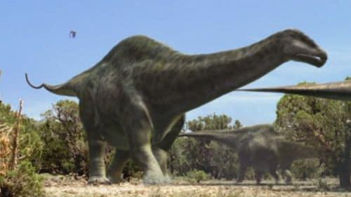 Le dinosaure Apatosaurus.