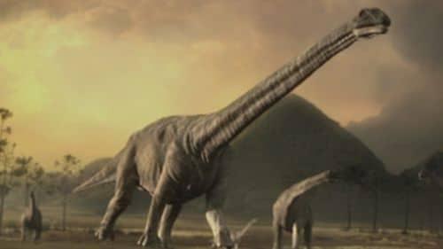 Un troupeau de dinosaures Argentinosaurus.