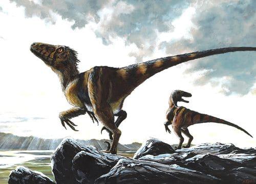 Deinonychus en chasse, ce dinosaure était un redoutable prédateur, certainement capable de traquer des proies en meute.