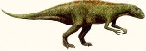 Acrocanthosaurus. Des empreintes fossilisées de pas de ce dinosaure ont été trouvées en Arkansas.