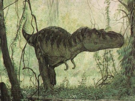 Albertosaurus.
