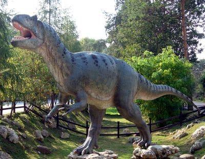 Dinosaure Allosaurus.