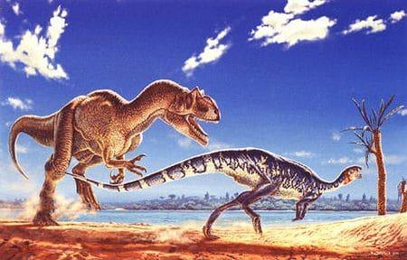 Allosaurus chassant une proie.