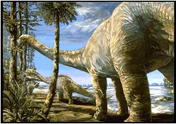 Dinosaure Apatosaurus.