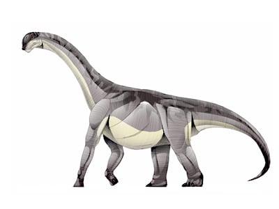 aragosaurus.