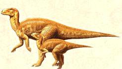 bactrosaurus.