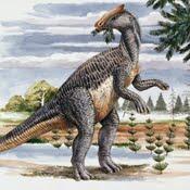 brachylophosaurus.
