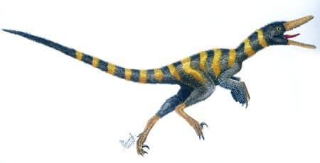 Buitreraptor.