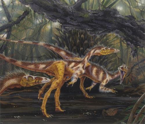 Groupe de dinosaure Compsognathus en chasse, c'était un petit théropode carnivore.