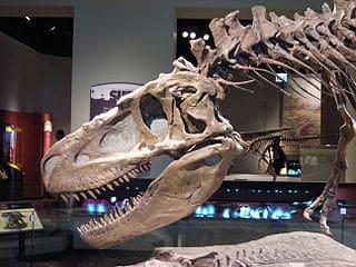 daspletosaurus.