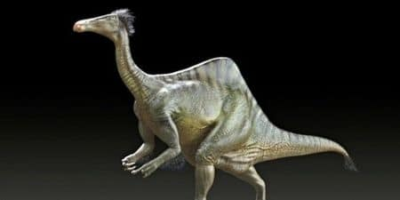 Deinocheirus mirificus.