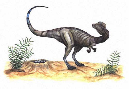 Le dinosaure Dilophosaurus.