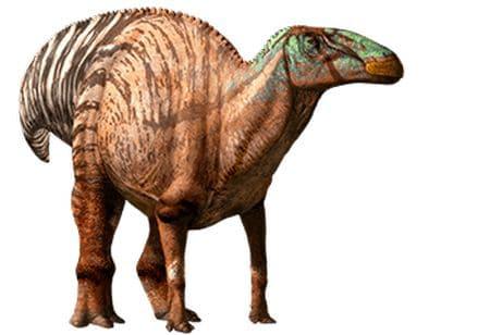 Dinosaure Edmontosaure.