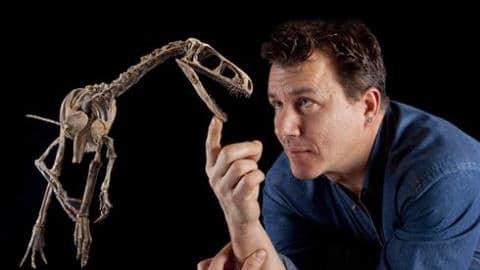 Fossile du dinosaure Eodromaeus et un paléontologue.