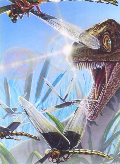 eoraptor.