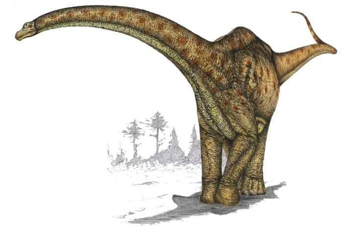 futalongkosaurus.