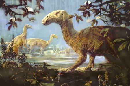 Dinosaure Hadrosaure.