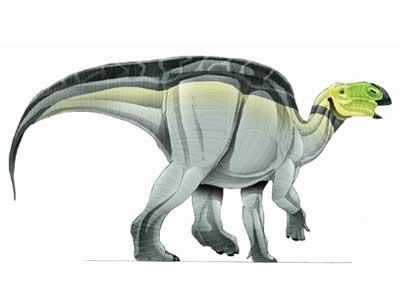 Image d'Hadrosaurus.