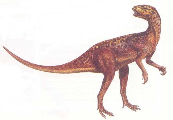 heterodontosaurus.