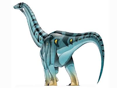 jainosaurus.