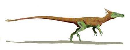 Dinosaure Juravenator.