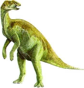 kritosaurus.