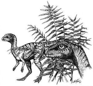 leaellynasaura.