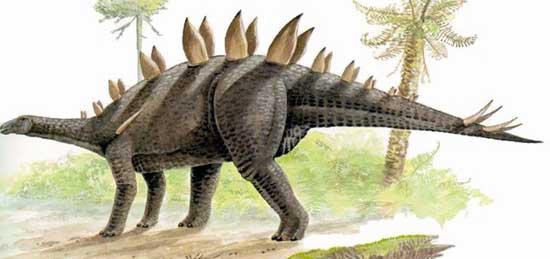 Stegosaure Lexovisaurus, une des découvertes de fossiles de dinosaures au XXème siècle en France.